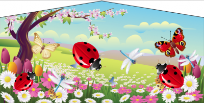 Butterflies and Ladybug Jumper Rentals